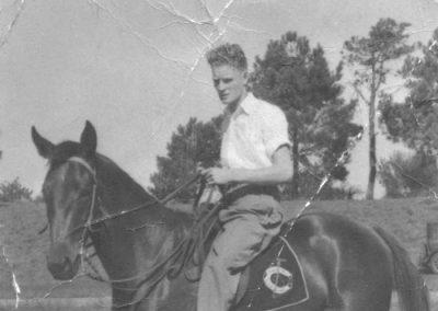 BGray-1946-horse-700x525